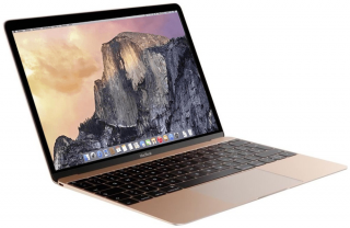 MacBook Retina Display 12 (2017)